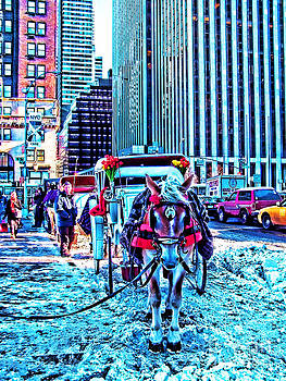 Anne Ferguson - Central Park Horse Carriage in Winter