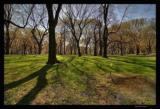 Central Park by Michael Thoms