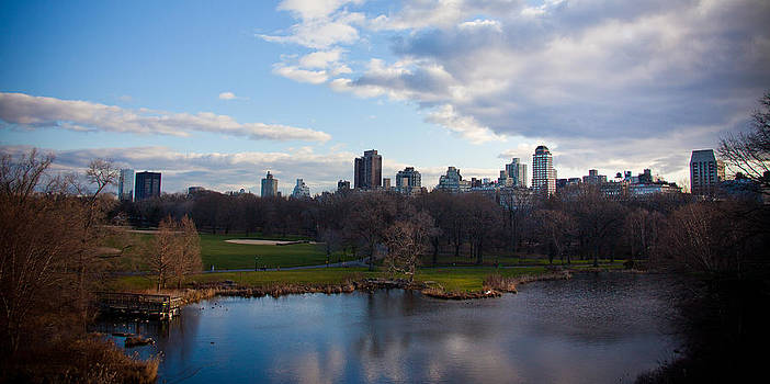 Central Park by Steven Gray