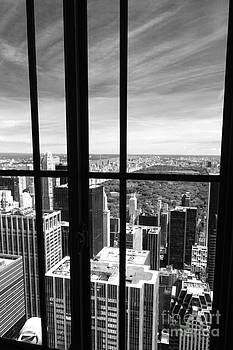 Central Park Window by Holger Ostwald