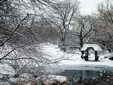 Central Park Winter 4 by Frank McAdam