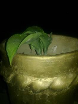 Ceramic by Shadrach Muyila