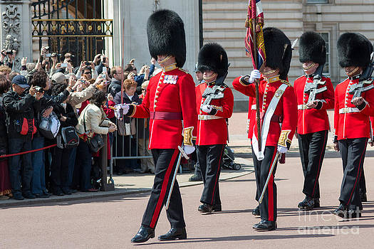 Changing of the guard at Buckingham palace by Andrew  Michael