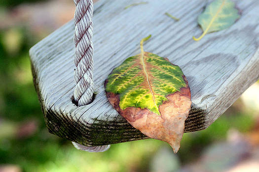 Changing Times by Dawn Nicoli