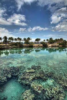 Chankanaab Lagoon by Brad Granger