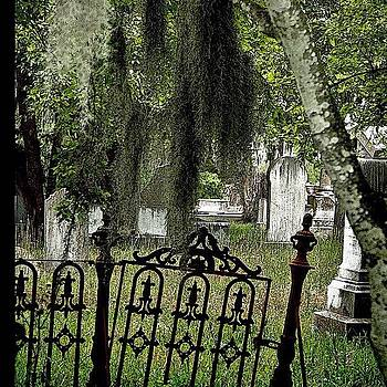 Charleston Cemetary by Felice Willat