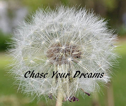 Chase Your Dreams by DeAnna Hutson