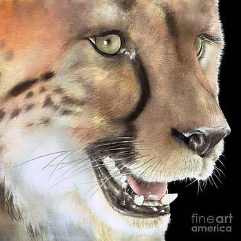 Cheetah by Karin Russer