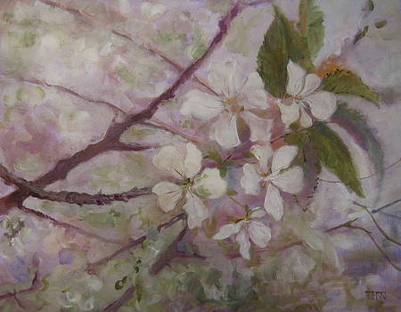 Cherries on Beekman by Terri Messinger