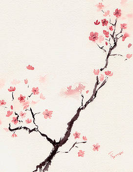 Cherry Blossom 3 by Rachel Dutton