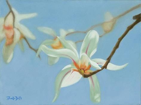 Cherry Blossom I by Pamela Bell