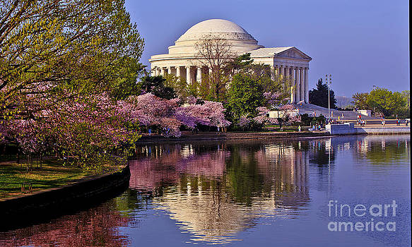Cherry Blossoms and the Jefferson Memorial by Mark East