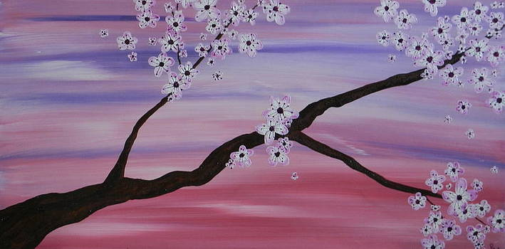 Cherry Blossoms At Sunrise by Heather  Hubb
