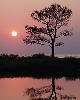 Maureen Cunningham - Chesapeake Bay Sunset