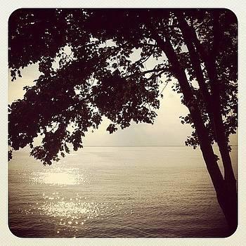 #chesapeakebay #jj #earlybird by Robyn Montella