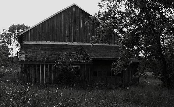 Chet's Barn by Anna Villarreal Garbis