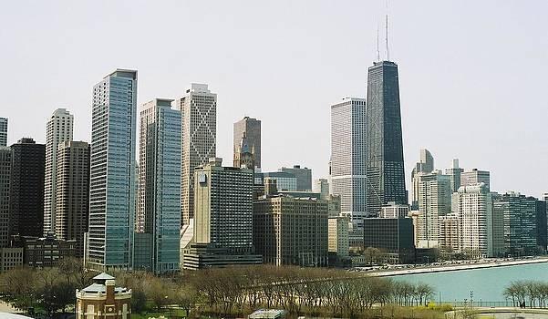 Chicago Skyline by Christopher Karczewski