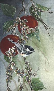 Chickadee by Meldra Driscoll