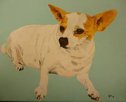 Chihuahua Pet Portrait Original Oil paintng 16 x 20 inch canvas by Pigatopia by Shannon Ivins