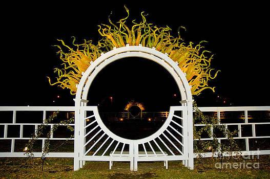 Tim Mulina - Chihuly Flaming Arch