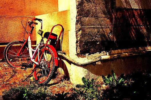 Childhood memory by Jyotsna Chandra