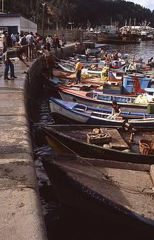 Chilean Fishing Boats by Thomas D McManus