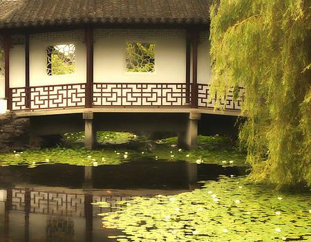 Diana Cox - Chinese Gardens