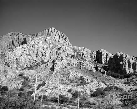 Chisos Mountain Detail by David Chalker