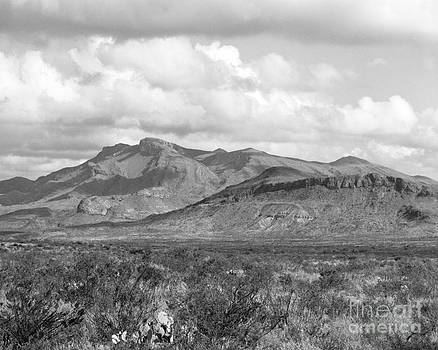 Chisos Mountain View by David Chalker