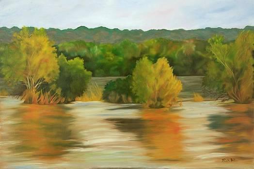 Chobe River by Pamela Bell