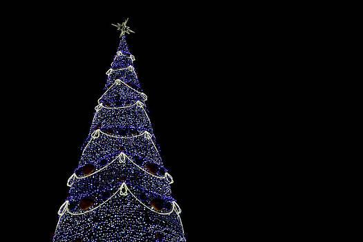 Christams tree by Daniel Kulinski