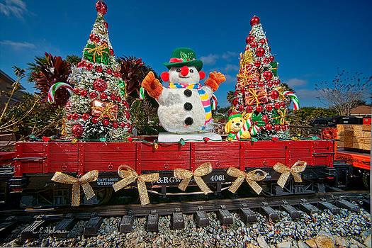 Christopher Holmes - Christmas Snowman On Rails