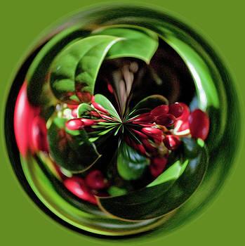 Christmas Time Orb by Sandi Blood