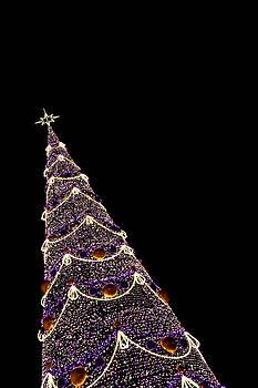 Christmas tree 2 by Daniel Kulinski