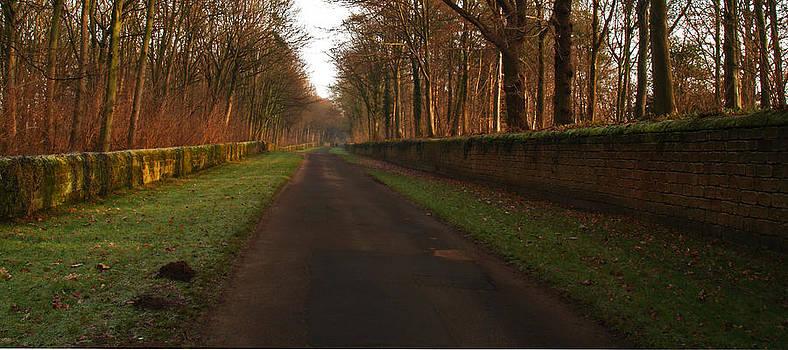 Church Lane Harewood 2 by Steve Watson