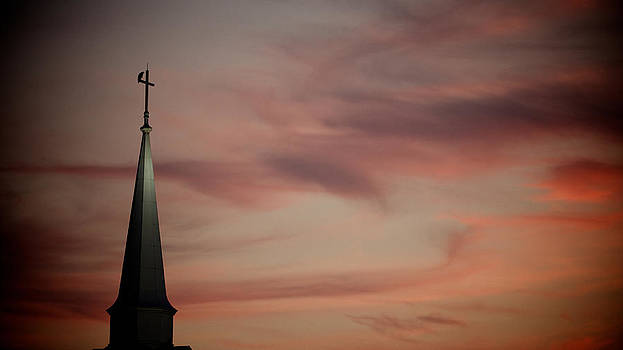 Church Raptor by Patrick Biestman