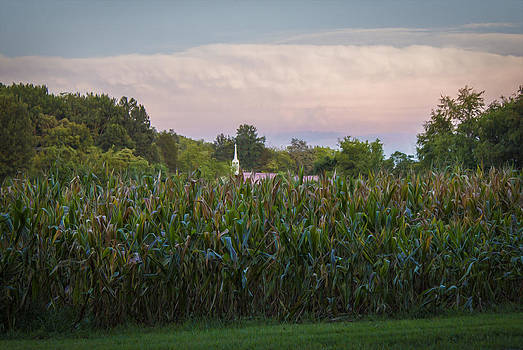 Churches and Cornfields by Tiffany Zumbrun