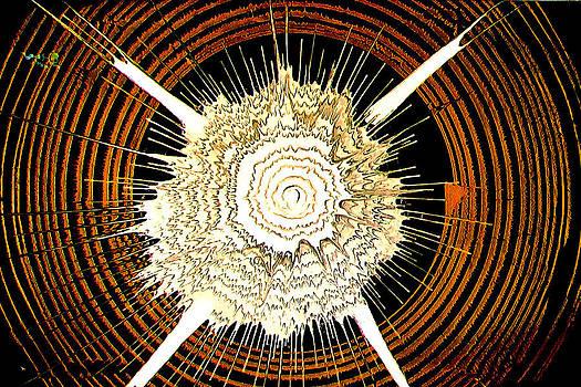 Circle X by Artist Singh