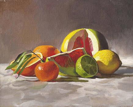 Citrus by Tatyana Holodnova