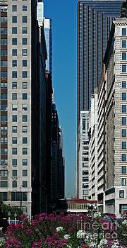 City by John  Fix