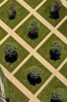 City Park by David Paul Murray