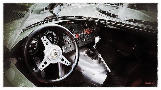 Classic Jaguar by SM Shahrokni