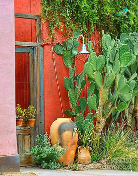 Clay Pot And Cactus by Bruce Wood