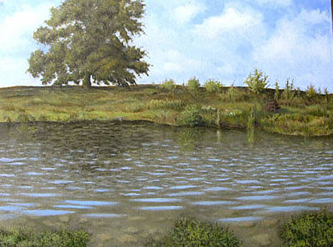 Clear Pond by Timothy Henneberry