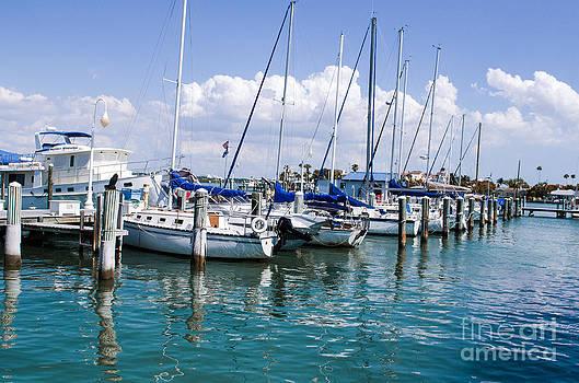 Clearwater Dock by Jeanne  Woods