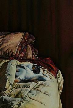 Cleo Sleeping on the Bed by Laurie Tietjen