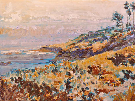 Cliffs at La Jolla California by Azhir Fine Art