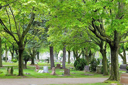 Rebecca Frank - Clinton  Grove Cemetery