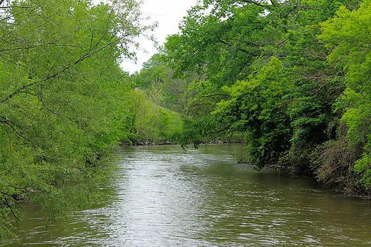 Rebecca Frank - Clinton River