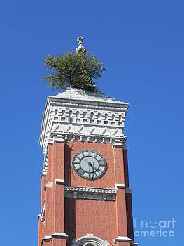 Clock Tower by Sandy Owens